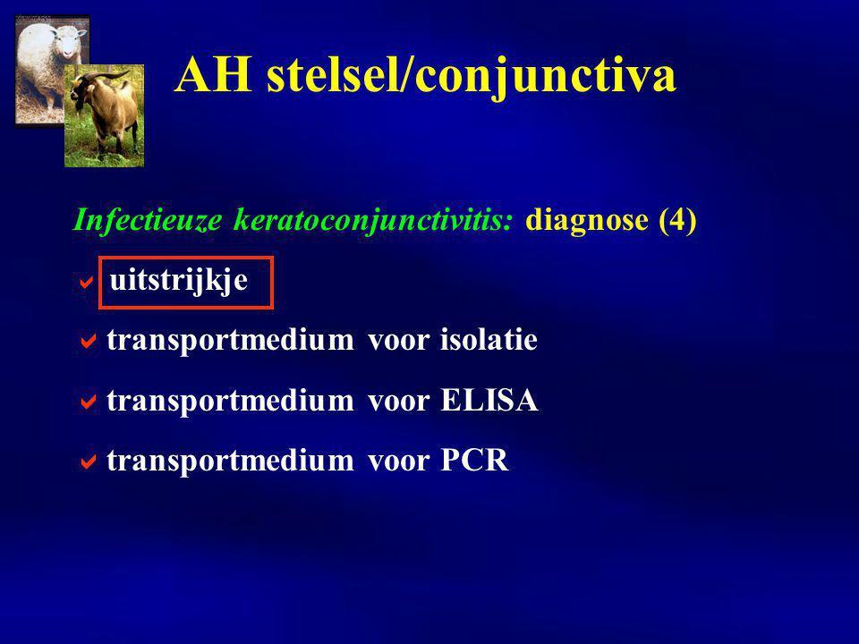 Clostridium perfringens enterotoxemieën: symptomen  meeste types entero-toxemie H-N enteritis dunne darm + toxemie Spijsverteringsstelsel
