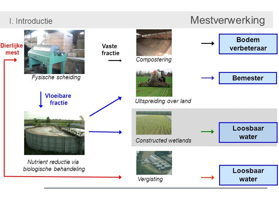 Cascade van plant- & microbieel gebbaseerde processen II. Van mest tot water Constructed wetlands