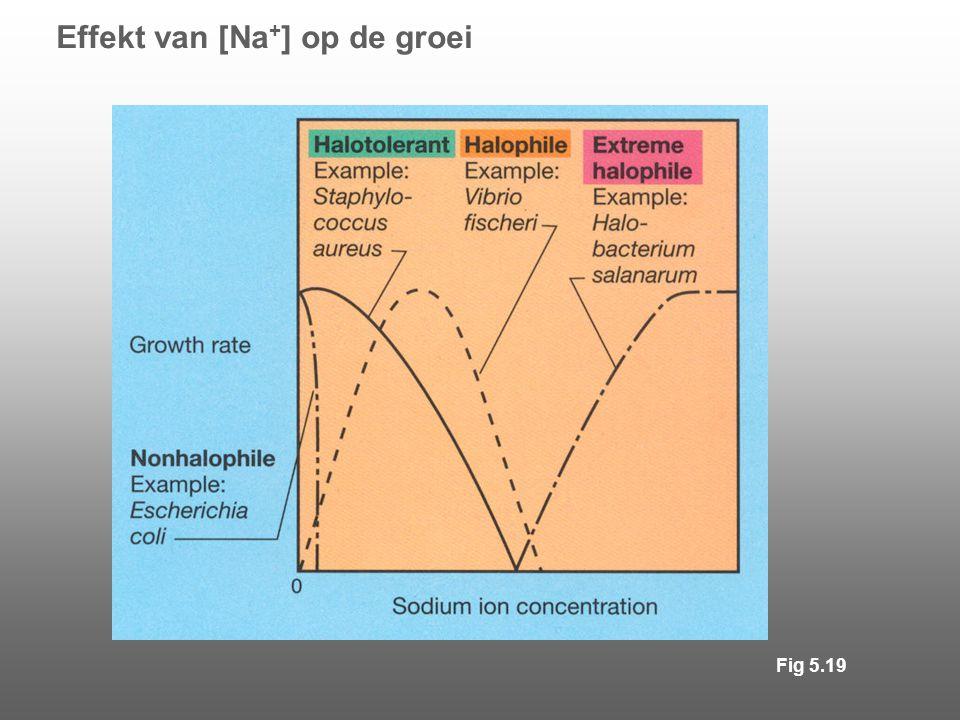 Effekt van [Na + ] op de groei Fig 5.19