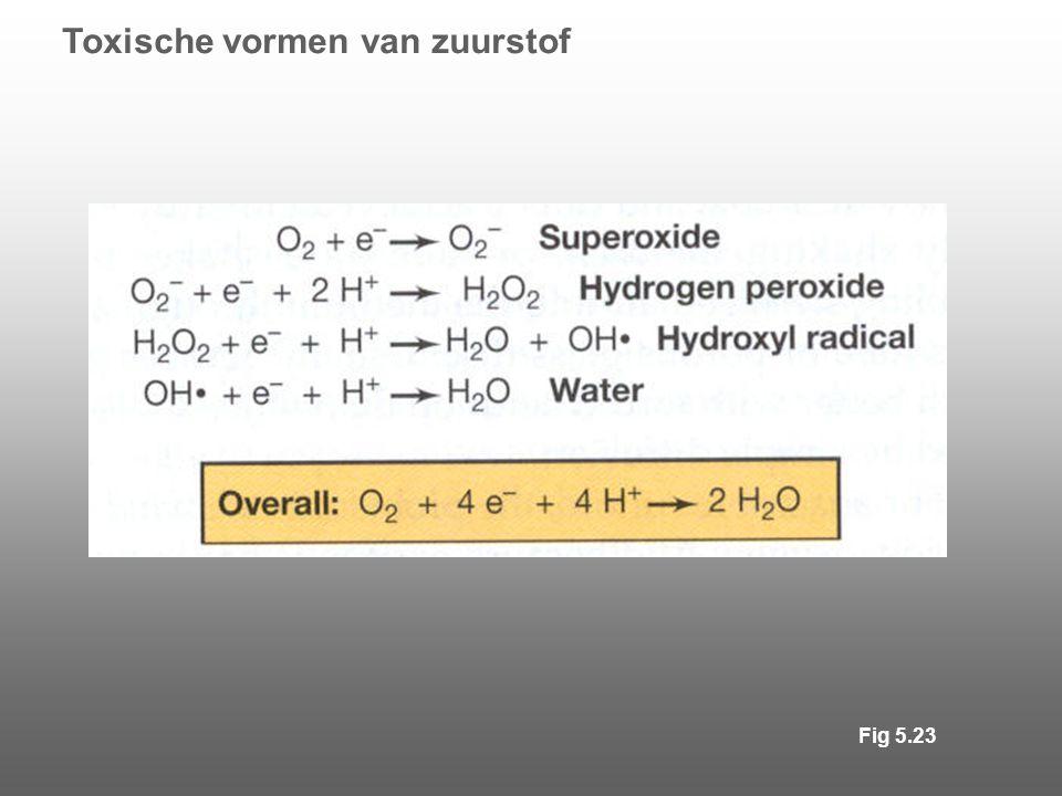 Toxische vormen van zuurstof Fig 5.23
