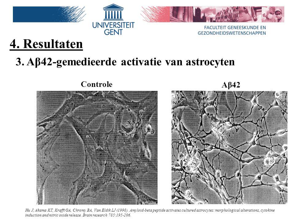 4. Resultaten Controle Aβ42 Hu J, Akama KT, Krafft GA, Chromy BA, Van Eldik LJ (1998). Amyloid-beta peptide activates cultured astrocytes: morphologic