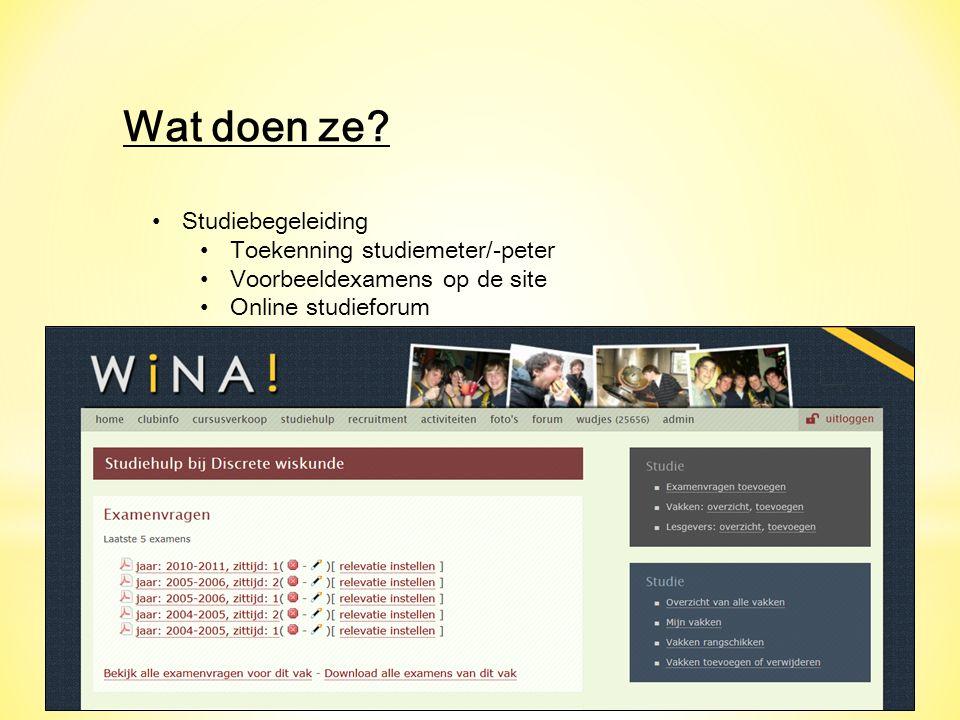 Wat doen ze? Studiebegeleiding Toekenning studiemeter/-peter Voorbeeldexamens op de site Online studieforum