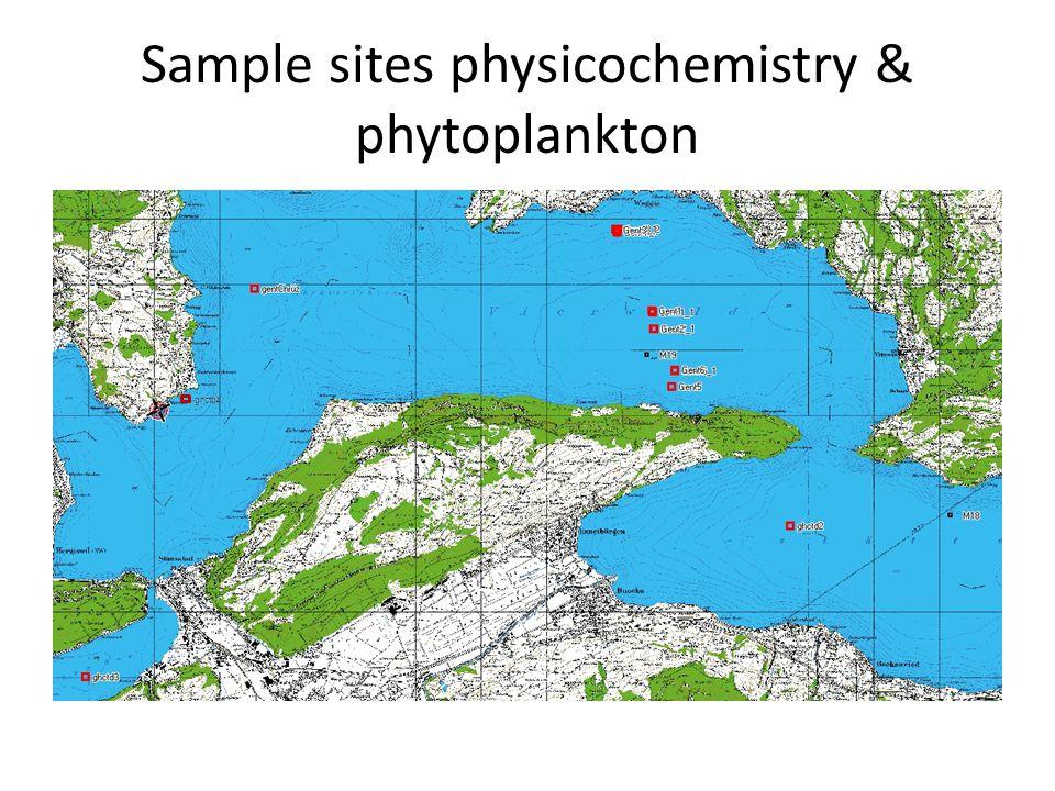 Phytoplankton gemeenschap CTD 1 DAY (Chrüztrichter): 0-35 m CTD1 NIGHT (Chrüztrichter): 0-35 m CTD2 (Gersau): 0-35 m CTD3 (Alpnachersee): 0-15 m Fragillaria crotonensis Ceratium hirundinellaAsterionella formosa Eudorina sp.Ceratium hirundinellaMallomonas sp.Fragillaria crotonensis Ceratium hirundinellaPeridinium sp.Fragillaria crotonensisEudorina sp.