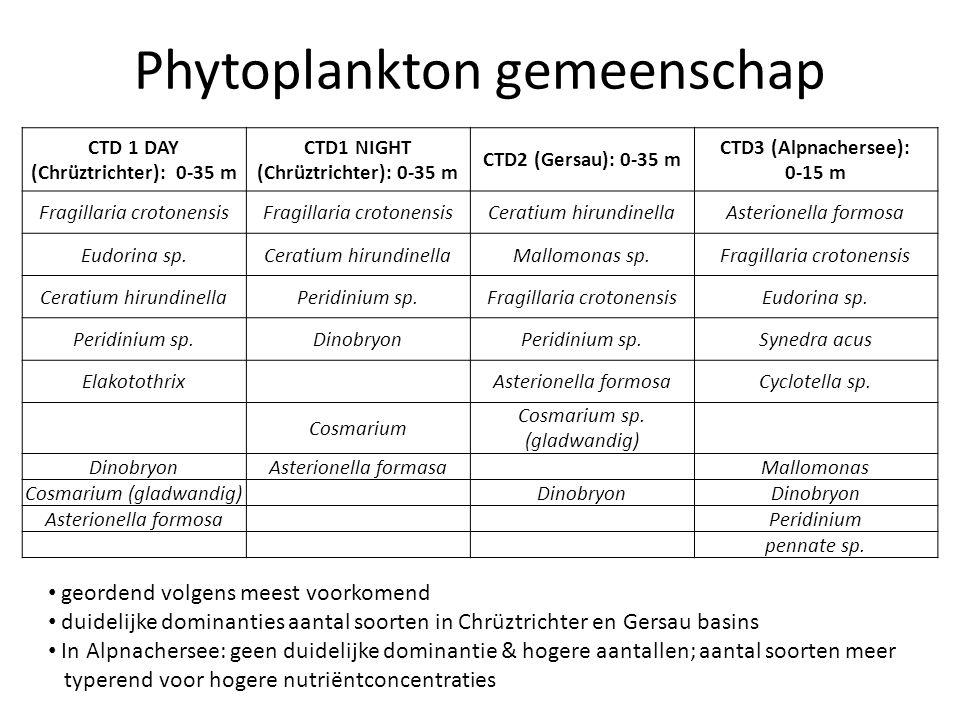 Phytoplankton gemeenschap Dinophyta – Ceratium Migreert (chl a nog relatief hoog op grotere diepte) – Peridinium ook migratie Chrysophyta – Dinobryon Vooral in CTD 1 en CTD 2 stalen (oligotrofer) Diatoms – Fragilaria (pennaat) Overal zeer dominant – Cyclotella (centricaat) Indicatie meer eutrofe toestand (CTD 3) – Asterionella (pennaat) CTD 1 & 2 Cyanophyta – Niet gezien maar in Bossard et al.
