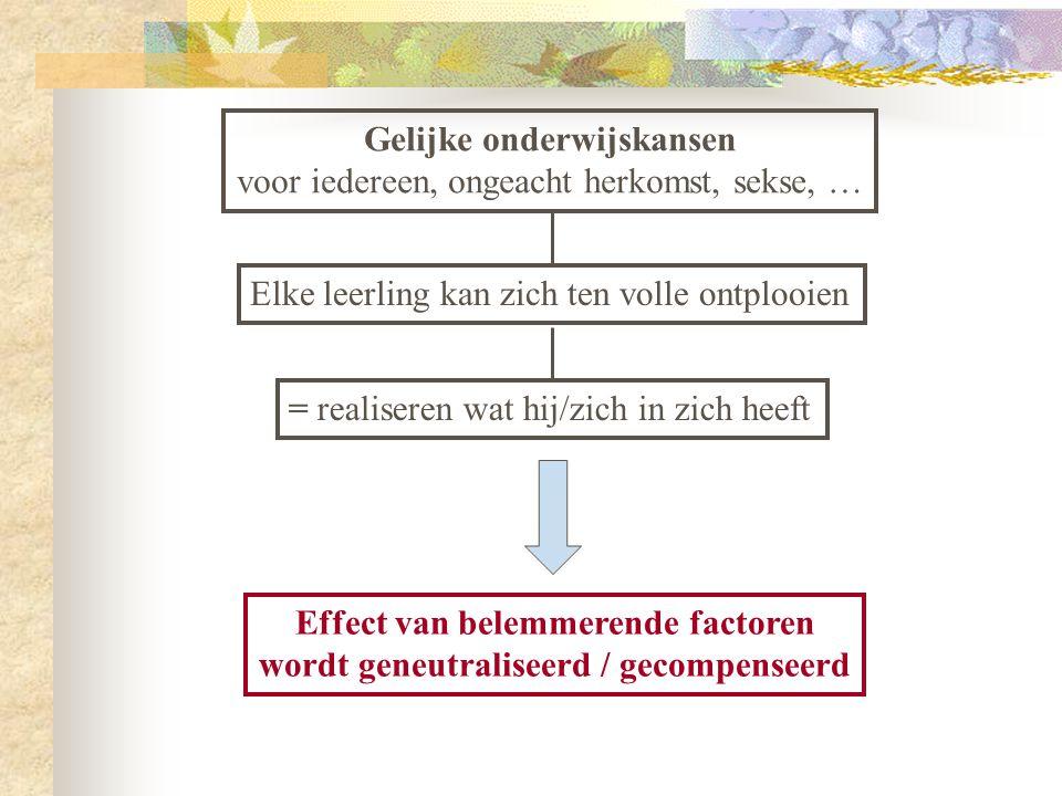 Hoe achtergesteld zijn Vlaamse / Belgische jongeren met een lage SES.