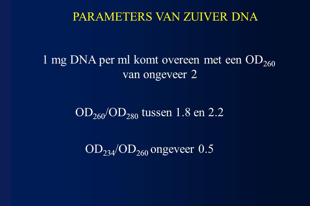 OD 260 /OD 280 tussen 1.8 en 2.2 1 mg DNA per ml komt overeen met een OD 260 van ongeveer 2 OD 234 /OD 260 ongeveer 0.5 PARAMETERS VAN ZUIVER DNA