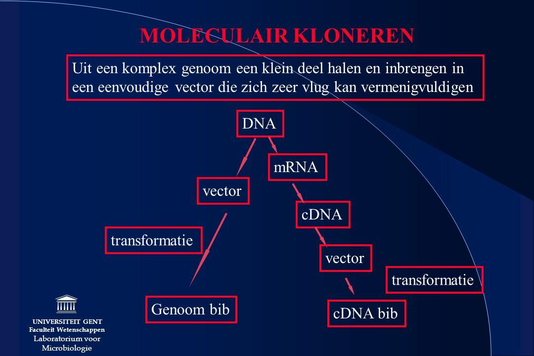 UNIVERSITEIT GENT Faculteit Wetenschappen Laboratorium voor Microbiologie MOLECULAIR KLONEREN Uit een komplex genoom een klein deel halen en inbrengen