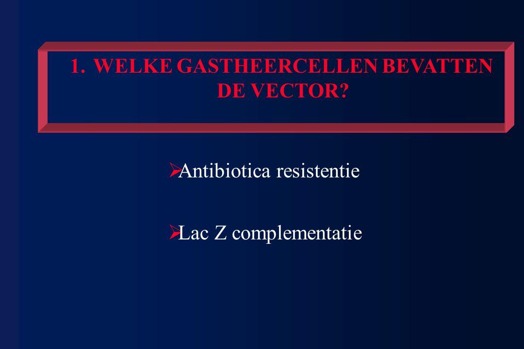 1.WELKE GASTHEERCELLEN BEVATTEN DE VECTOR?  Antibiotica resistentie  Lac Z complementatie