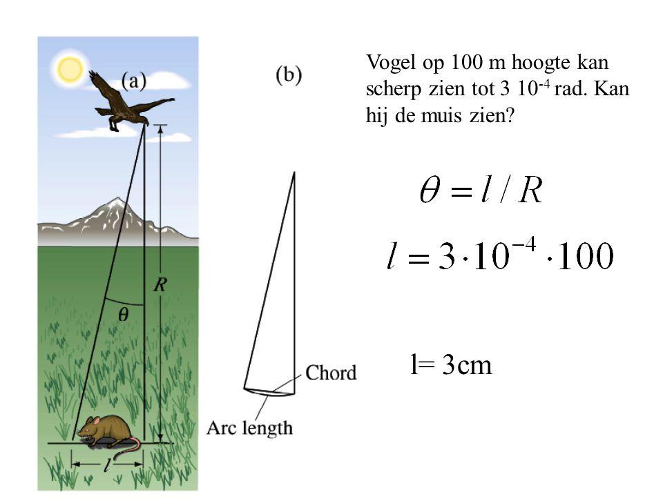 Vogel op 100 m hoogte kan scherp zien tot 3 10 -4 rad. Kan hij de muis zien? l= 3cm