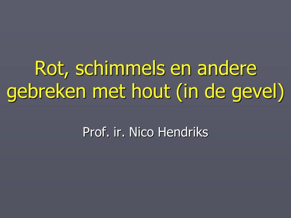 Rot, schimmels en andere gebreken met hout (in de gevel) Prof. ir. Nico Hendriks