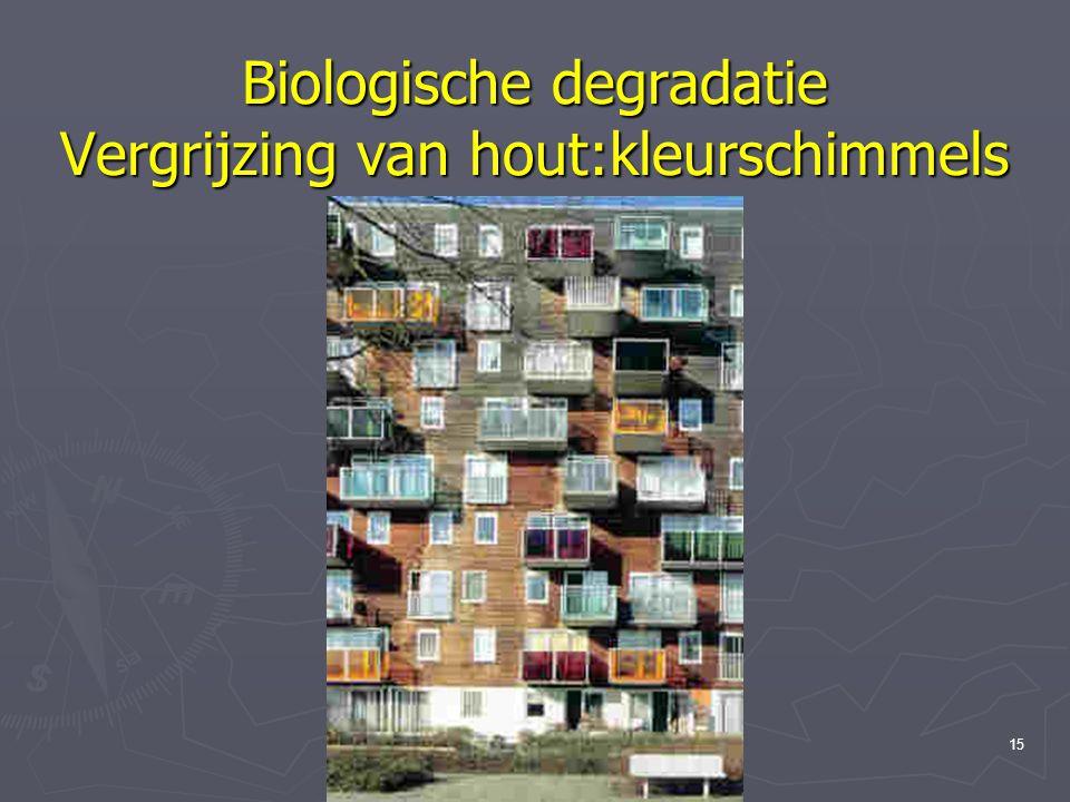 Materiaalkunde 3, hfst. 2 Hout14 Biologische degradatie Vergrijzing van hout:kleurschimmels