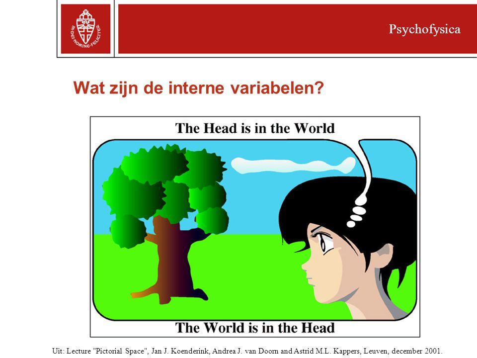 Wat zijn de interne variabelen.Psychofysica Uit: Lecture Pictorial Space , Jan J.