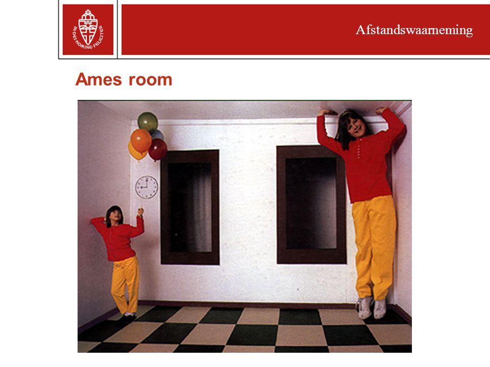 Ames room Afstandswaarneming