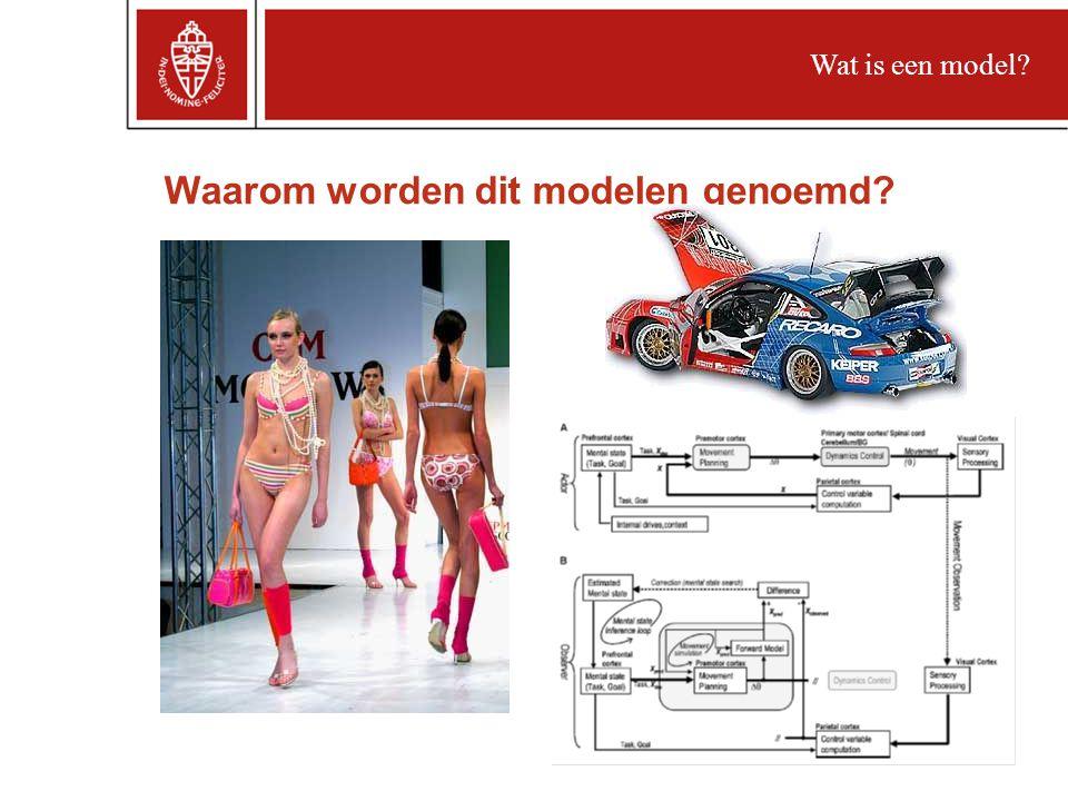 Waarom worden dit modelen genoemd? Wat is een model?