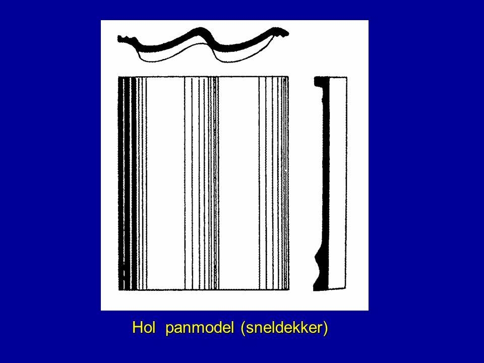 Hol panmodel (sneldekker)