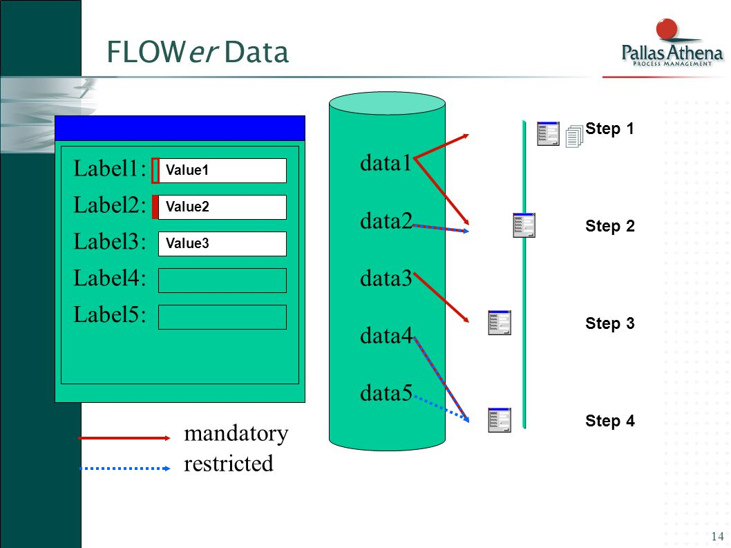 14 data1 data2 data3 data4 data5 Label1: Label2: Label3: Label4: Label5: mandatory restricted Value1 Step 1 Step 2 Step 3 Step 4  Value3 Value2 FLOWer Data