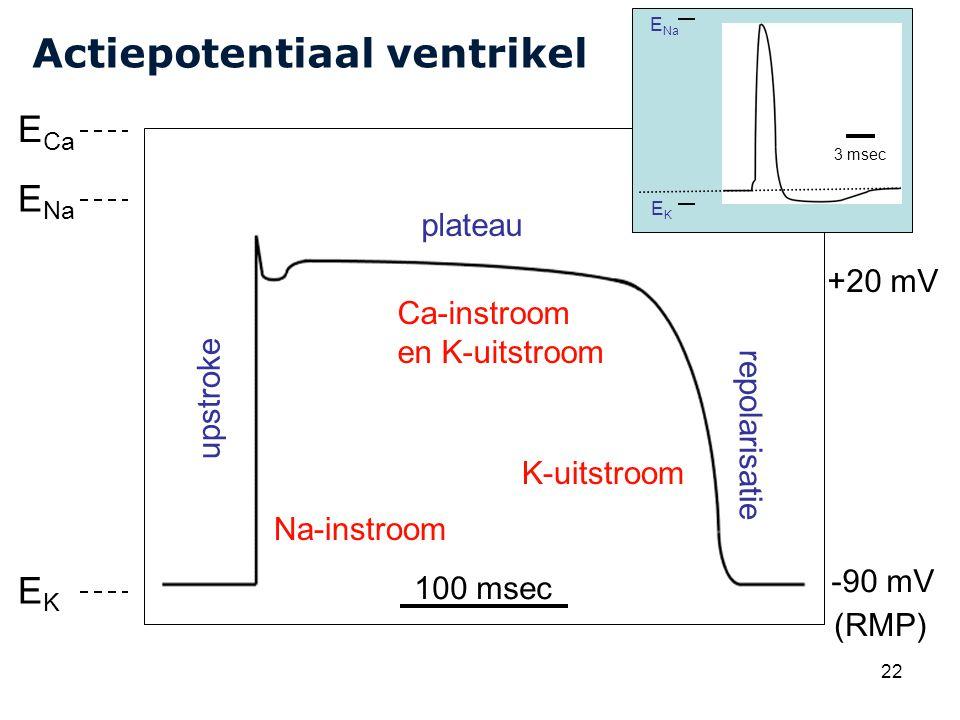 Cardiovascular Research Institute Maastricht (CARIM) 22 Actiepotentiaal ventrikel upstroke plateau repolarisatie (RMP) 100 msec -90 mV +20 mV E Na EKEK Na-instroom K-uitstroom Ca-instroom en K-uitstroom +20 mV E Ca E Na EKEK 3 msec