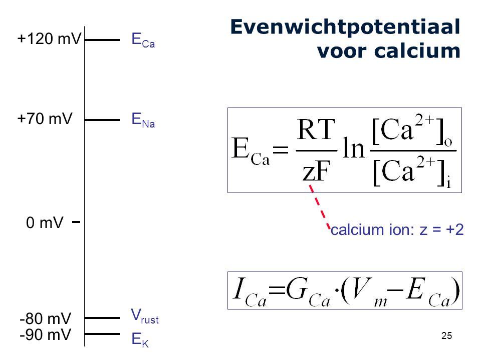 Cardiovascular Research Institute Maastricht (CARIM) 25 Evenwichtpotentiaal voor calcium V rust E Na EKEK +70 mV -80 mV 0 mV -90 mV E Ca +120 mV calcium ion: z = +2