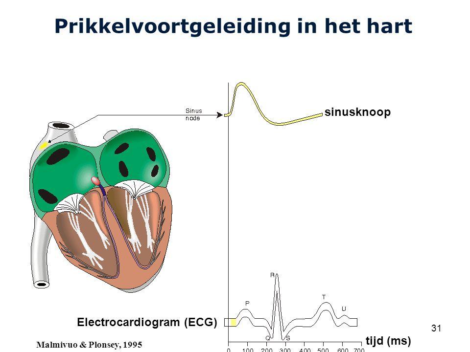 Cardiovascular Research Institute Maastricht (CARIM) College 58E020 Inleiding Meten 31 Prikkelvoortgeleiding in het hart sinusknoop Electrocardiogram (ECG) tijd (ms) Malmivuo & Plonsey, 1995