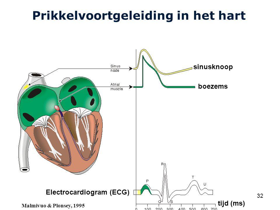 Cardiovascular Research Institute Maastricht (CARIM) College 58E020 Inleiding Meten 32 Prikkelvoortgeleiding in het hart sinusknoop boezems Electrocardiogram (ECG) tijd (ms) Malmivuo & Plonsey, 1995