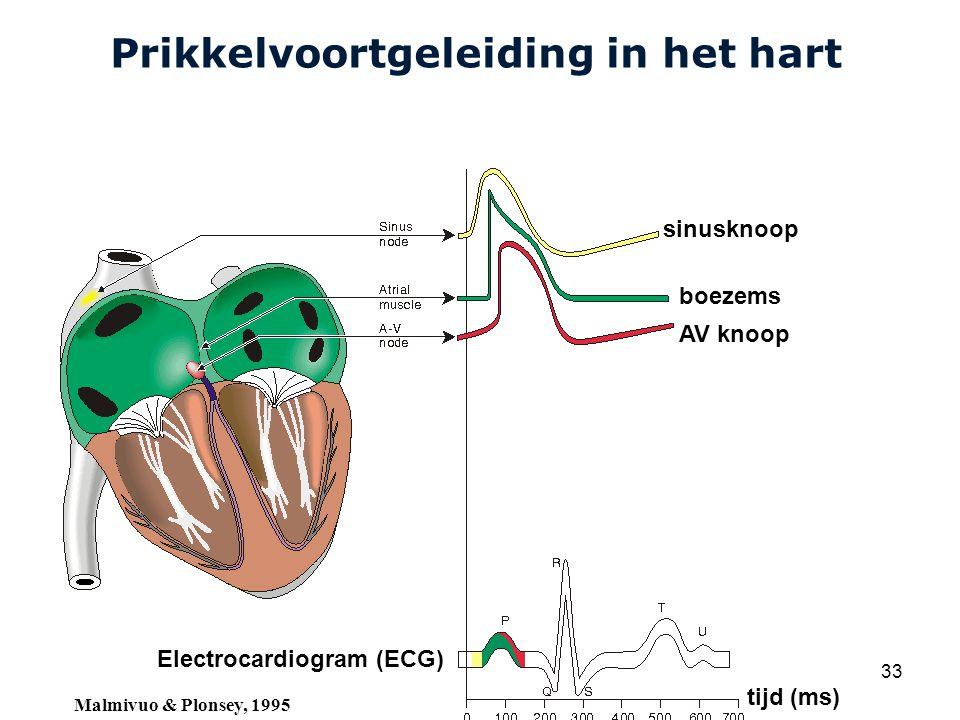 Cardiovascular Research Institute Maastricht (CARIM) College 58E020 Inleiding Meten 33 Prikkelvoortgeleiding in het hart sinusknoop boezems AV knoop Electrocardiogram (ECG) tijd (ms) Malmivuo & Plonsey, 1995