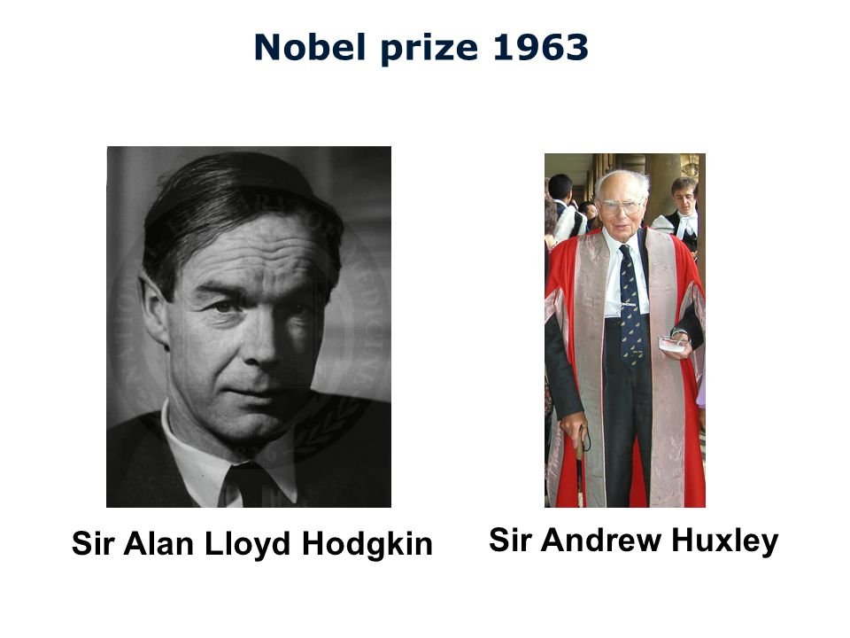 Cardiovascular Research Institute Maastricht (CARIM) Nobel prize 1963 Sir Alan Lloyd Hodgkin Sir Andrew Huxley