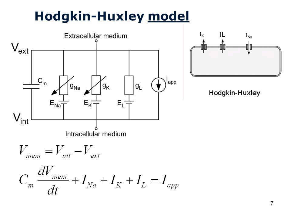 Cardiovascular Research Institute Maastricht (CARIM) 18 Hodgkin-Huxley: gating variabelen Tijd [ms]
