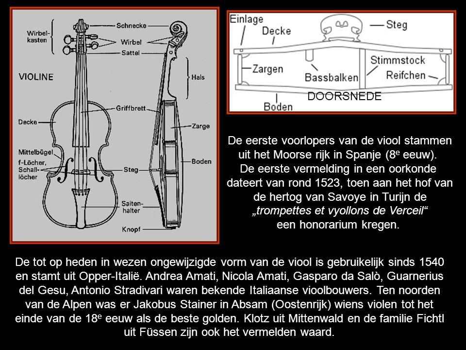 De viool is een uit vier verschillende houtsoorten vervaardigd snaarinstrument.