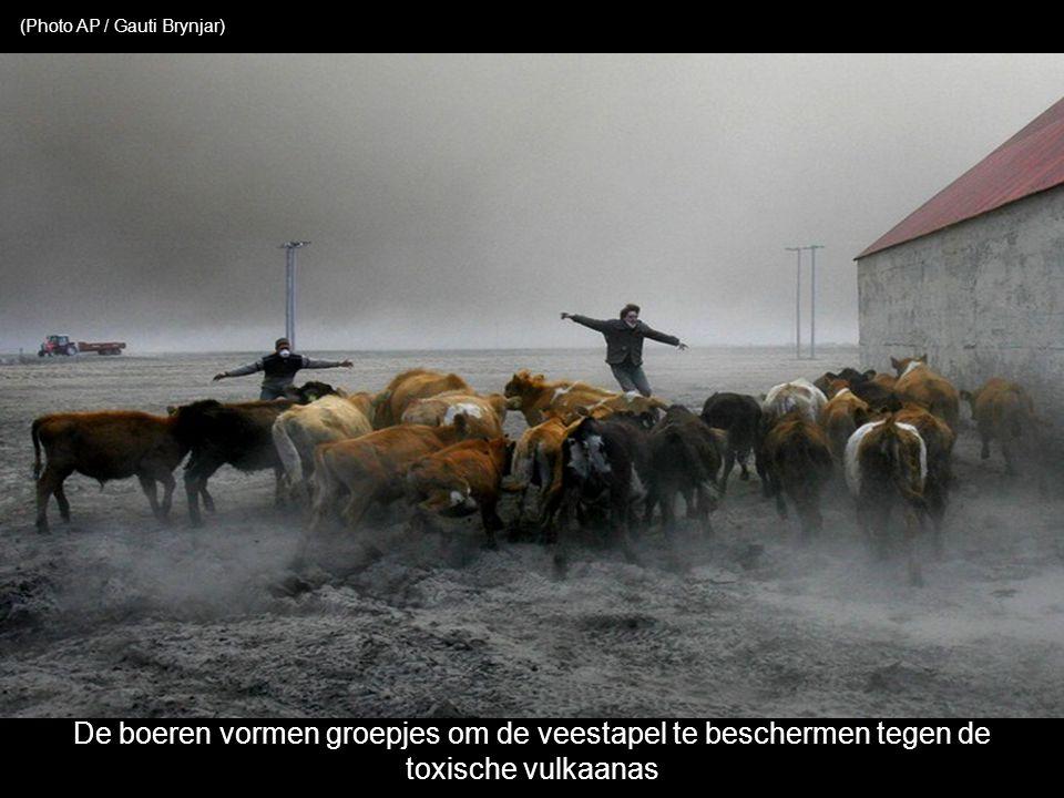Een landbouwer bekijkt de vulkanische asneerslag op zijn erf (KOLBEINS HALLDOR / AFP / Getty Images)