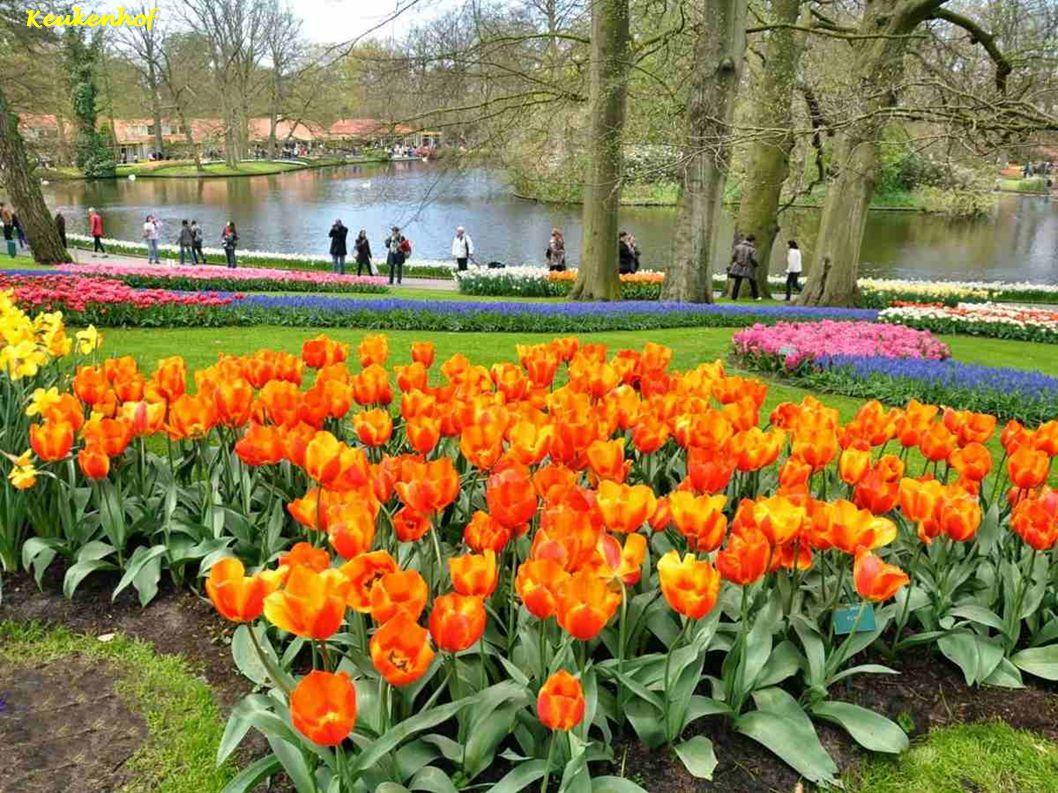 Amsterdam-Museum Van Loon tuin