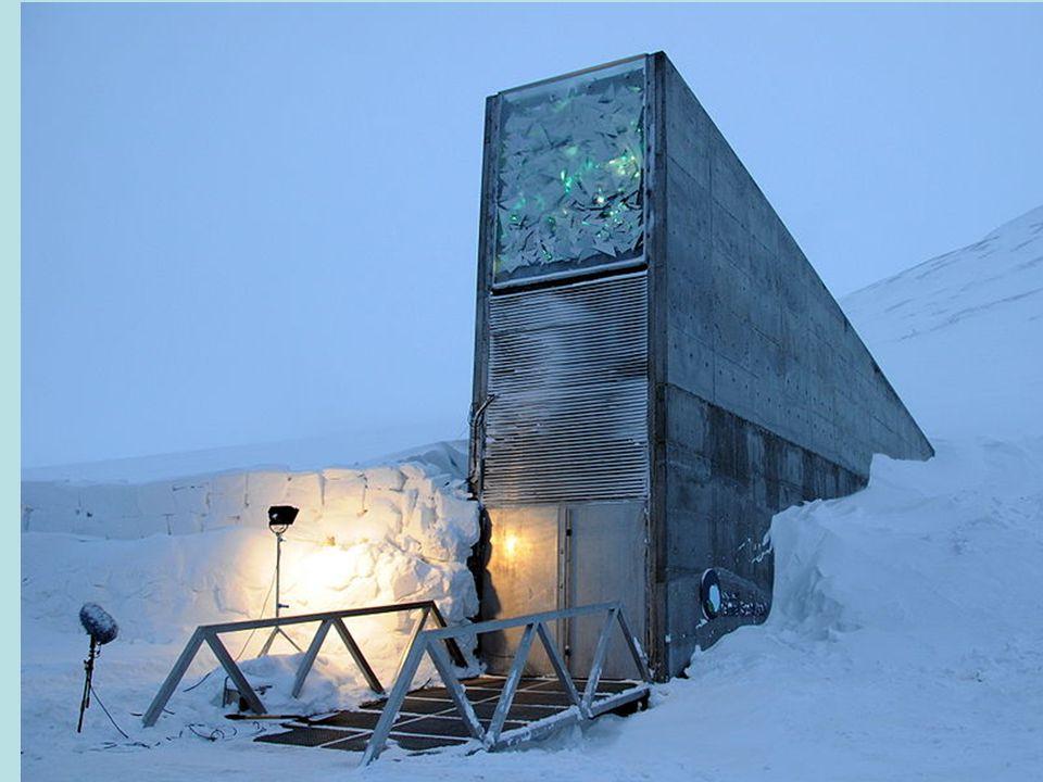 """De Svalbard International Seed Vault (SISV), ook gekend als de""""kluis aan het einde van de wereld"""", is ontworpen voor het bewaren van stalen van alle d"""