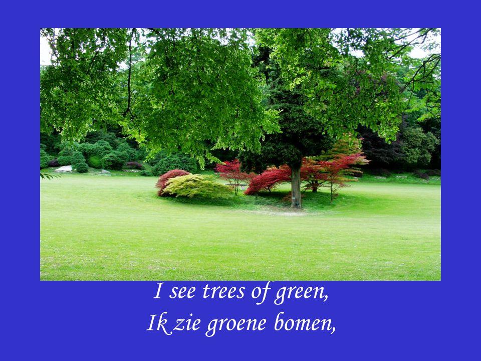 I see trees of green, Ik zie groene bomen,
