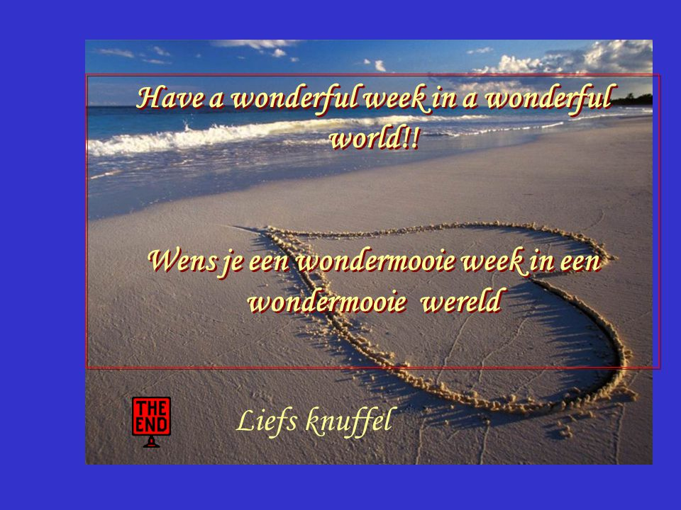 what a wonderful world. Wat een wondermooie wereld.