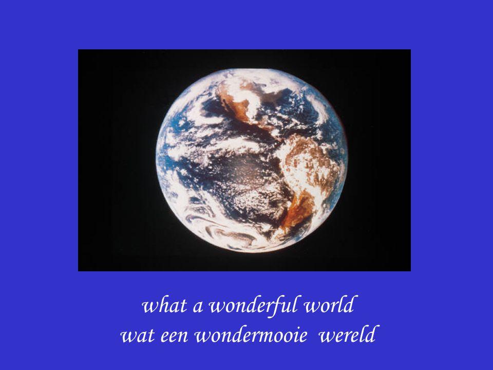 what a wonderful world wat een wondermooie wereld