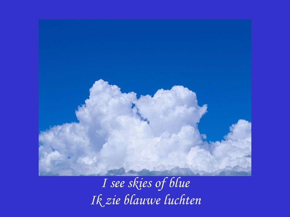 I see skies of blue Ik zie blauwe luchten