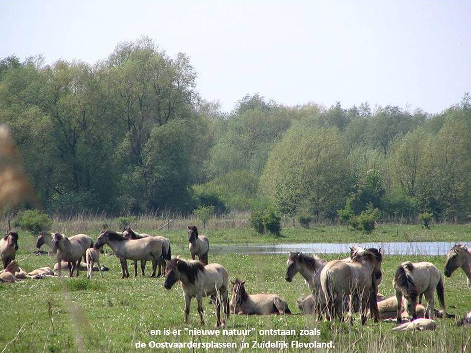 Verder bieden het huidige IJsselmeer en Flevoland recreatiemogelijkheden voor de overvolle Randstad...