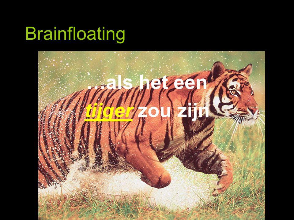 Brainfloating …als het een tijger zou zijn
