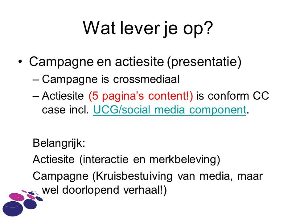 Wat lever je op? Campagne en actiesite (presentatie) –Campagne is crossmediaal –Actiesite (5 pagina's content!) is conform CC case incl. UCG/social me