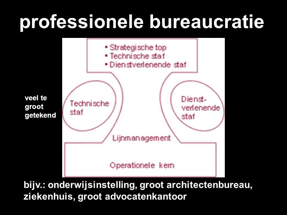 professionele bureaucratie veel te groot getekend bijv.: onderwijsinstelling, groot architectenbureau, ziekenhuis, groot advocatenkantoor