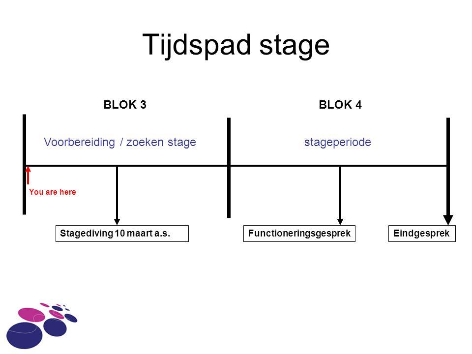 Tijdspad stage BLOK 3BLOK 4 Stagediving 10 maart a.s.