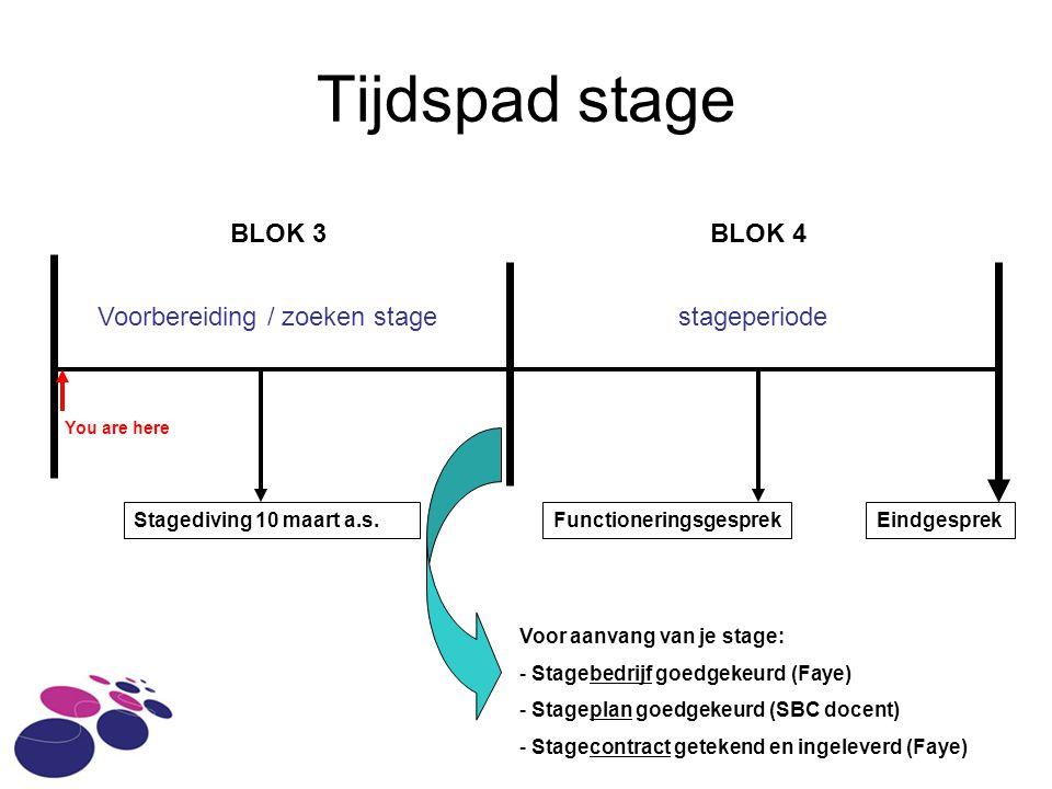 Tijdspad stage BLOK 3BLOK 4 Voorbereiding / zoeken stagestageperiode FunctioneringsgesprekEindgesprek Voor aanvang van je stage: - Stagebedrijf goedgekeurd (Faye) - Stageplan goedgekeurd (SBC docent) - Stagecontract getekend en ingeleverd (Faye) You are here Stagediving 10 maart a.s.