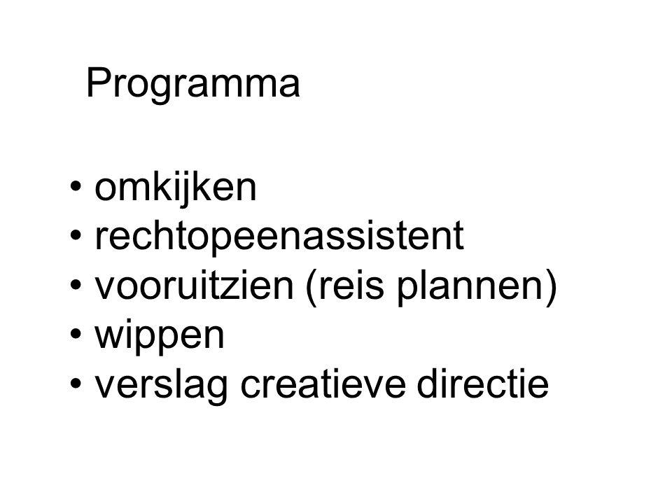 Programma omkijken rechtopeenassistent vooruitzien (reis plannen) wippen verslag creatieve directie