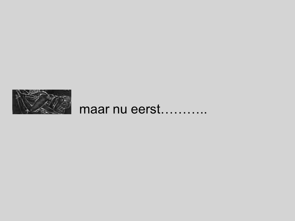 maar nu eerst………..