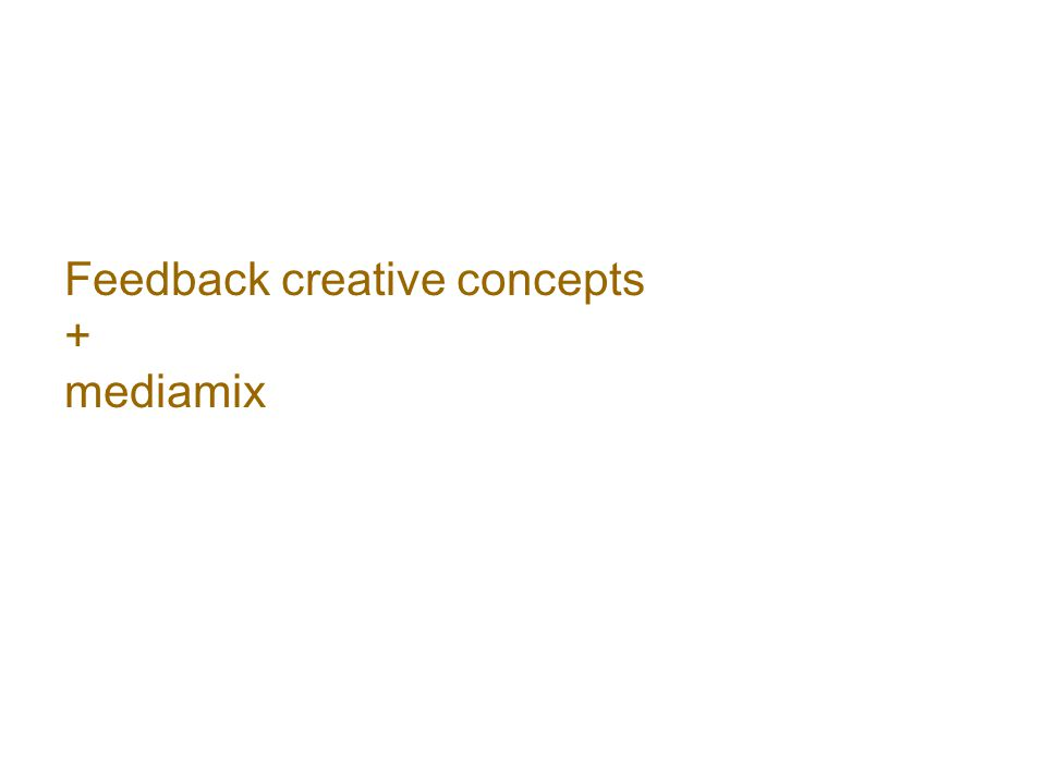 Feedback creative concepts + mediamix