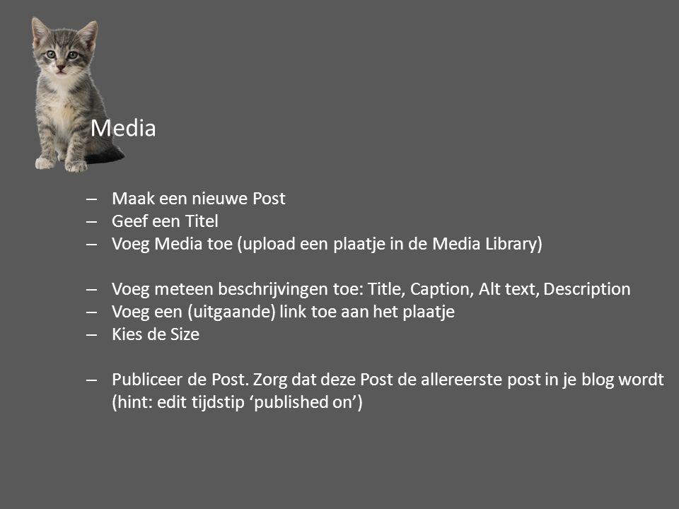 –Maak een nieuwe Post –Geef een Titel –Voeg Media toe (upload een plaatje in de Media Library) –Voeg meteen beschrijvingen toe: Title, Caption, Alt text, Description –Voeg een (uitgaande) link toe aan het plaatje –Kies de Size –Publiceer de Post.
