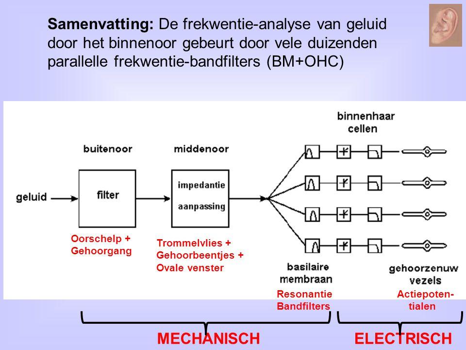 Samenvatting: De frekwentie-analyse van geluid door het binnenoor gebeurt door vele duizenden parallelle frekwentie-bandfilters (BM+OHC) Oorschelp + G