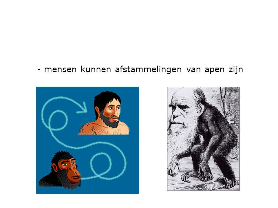 - mensen kunnen afstammelingen van apen zijn