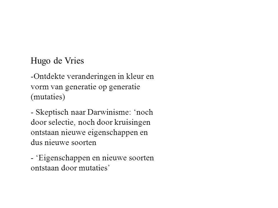 Hugo de Vries -Ontdekte veranderingen in kleur en vorm van generatie op generatie (mutaties) - Skeptisch naar Darwinisme: 'noch door selectie, noch do