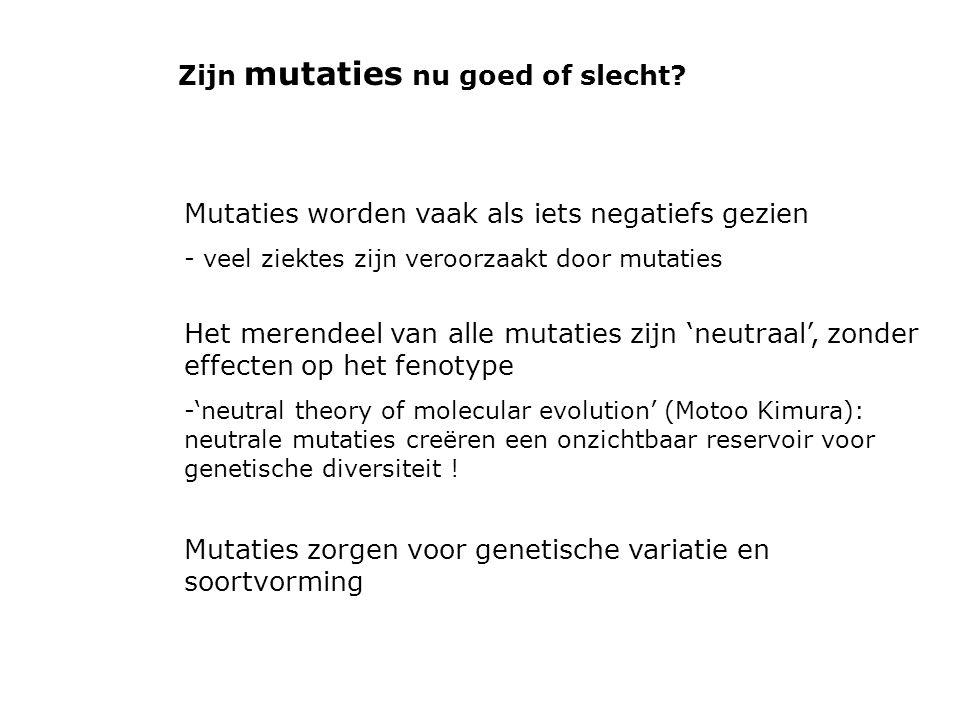 Zijn mutaties nu goed of slecht? Mutaties worden vaak als iets negatiefs gezien - veel ziektes zijn veroorzaakt door mutaties Het merendeel van alle m