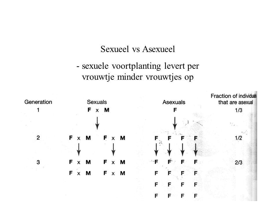 Sexueel vs Asexueel - sexuele voortplanting levert per vrouwtje minder vrouwtjes op